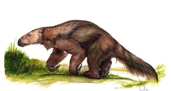 Bicho-preguiça gigantesco (imagem referencial)