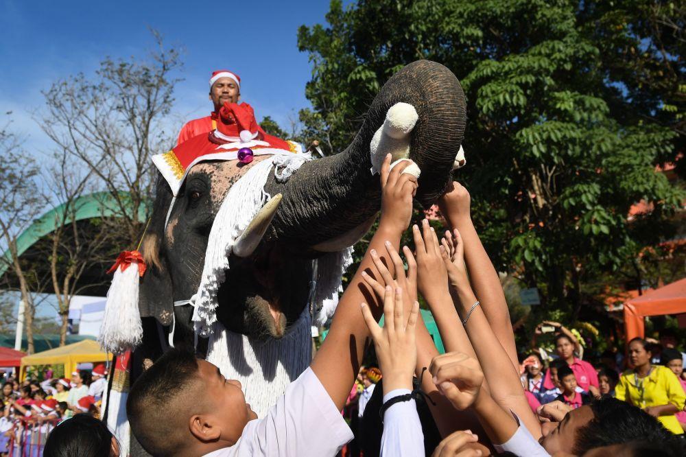 Elefante vestido de Papai Noel entrega brinquedos e presentes a crianças durante celebrações de Natal em Ayutthaya, na Tailândia, em 24 de dezembro de 2018