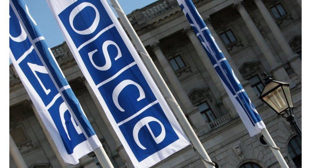 OSCE, Viena