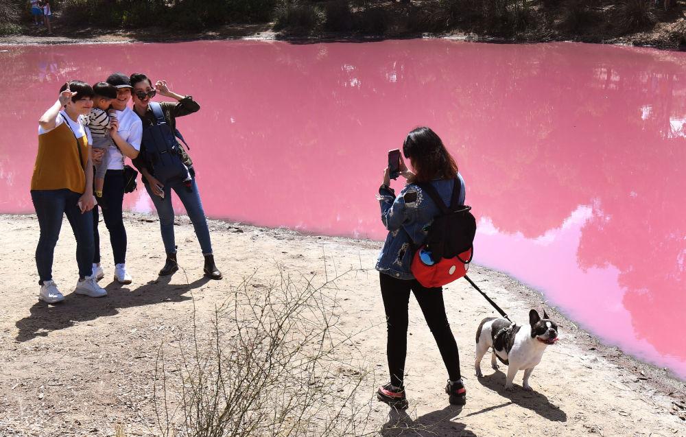 Pessoas tirando fotos perto de um lago que ficou com a cor rosa devido a um fenômeno natural surpreendente, em Melbourne, Austrália, 4 de março de 2019