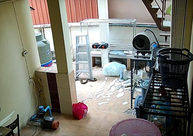 Cobra cai de teto em casa tailandesa