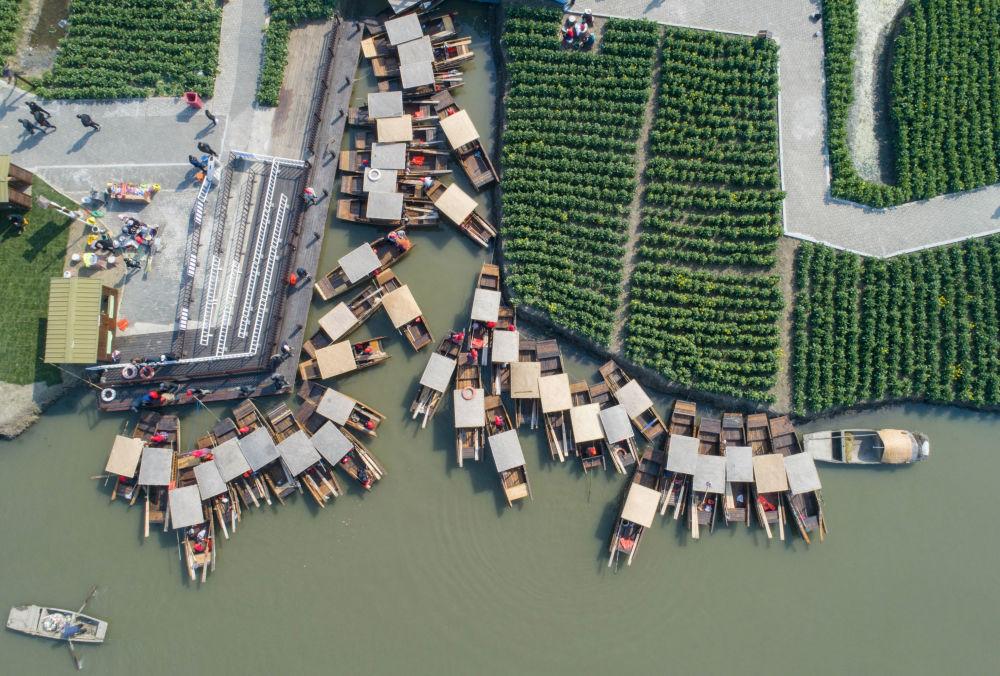 Vista do ar dos barcos fundeados ao longo de campos de colza na China