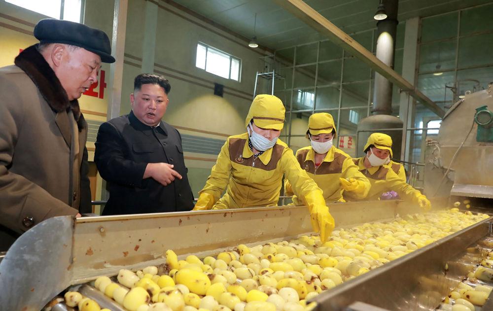 Kim Jong-un inspeciona produção de farinha de batata