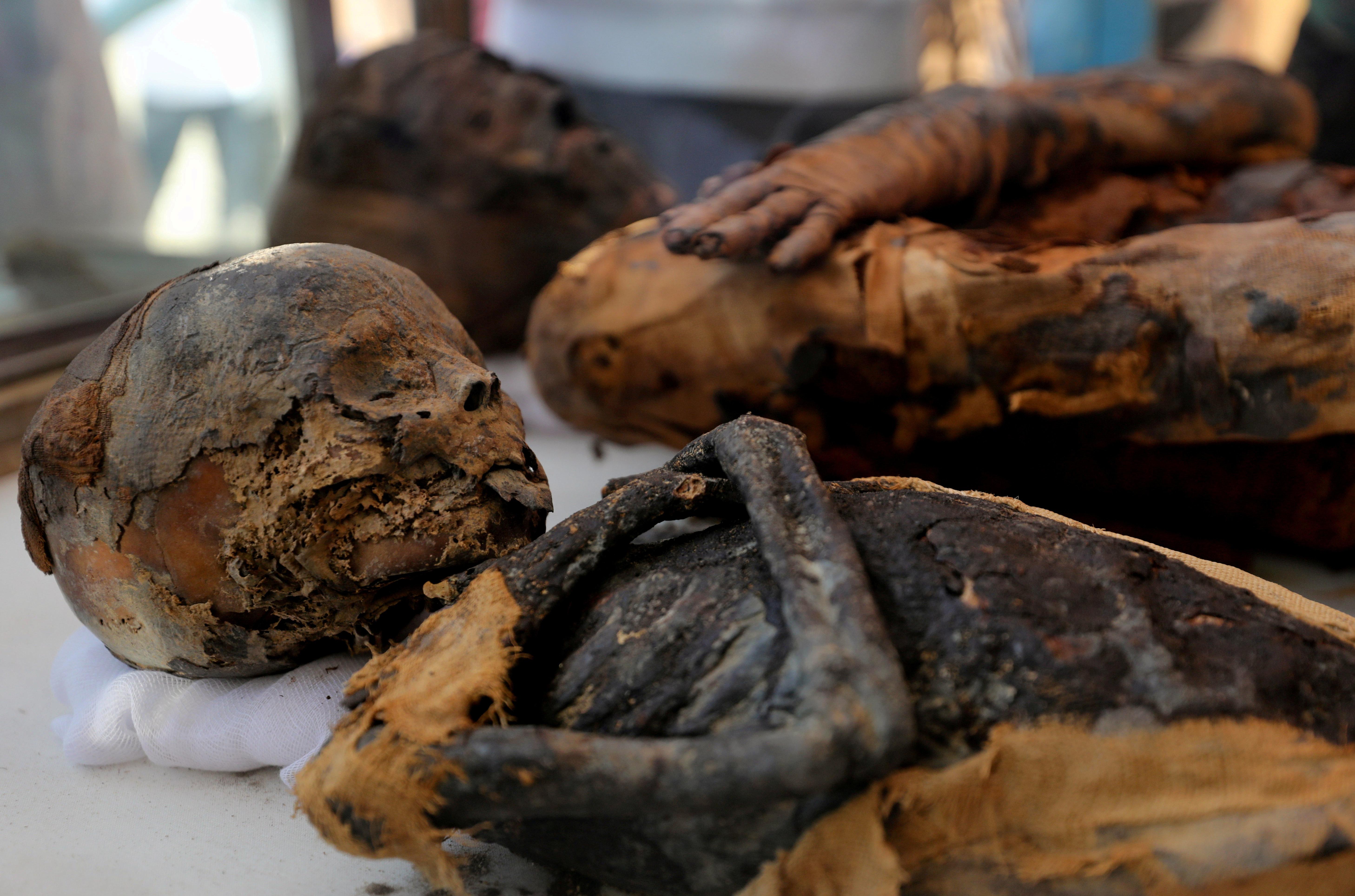 Duas múmias, de uma mulher e de uma criança, estão em exposição no recém-descoberto enterramento, o Túmulo de Tutu, em al-Dayabat, Sohag