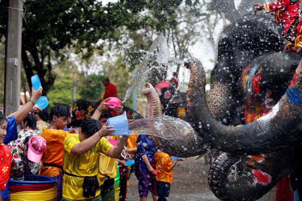 Elefantes e pessoas brincam com água na Tailândia