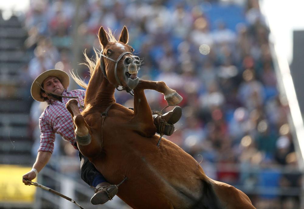 Gaúcho monta cavalo durante celebrações em Montevidéu, Uruguai, 17 de abril de 2019