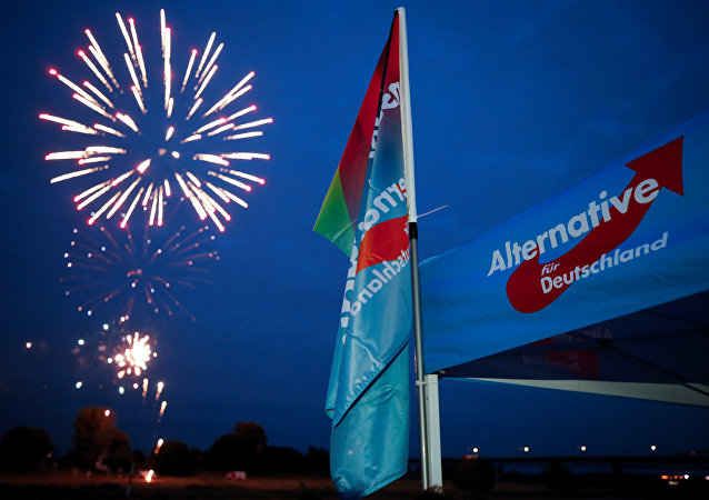 Germany's far-right Alternative for Germany AfD party burn a private fireworks during an election campaign tour by ship on the river Rhine near Krefeld, western Germany, September 4, 2017.