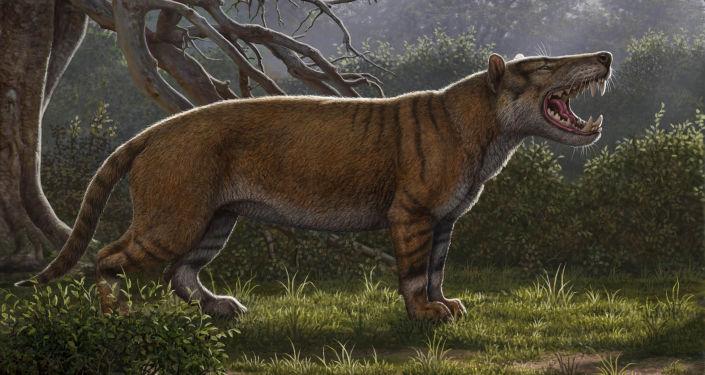 Imagem artística do antigo predador Simbakubwa kutokaafrika, o gigantesco mamífero carnívoro que viveu há 22 milhões de anos na África