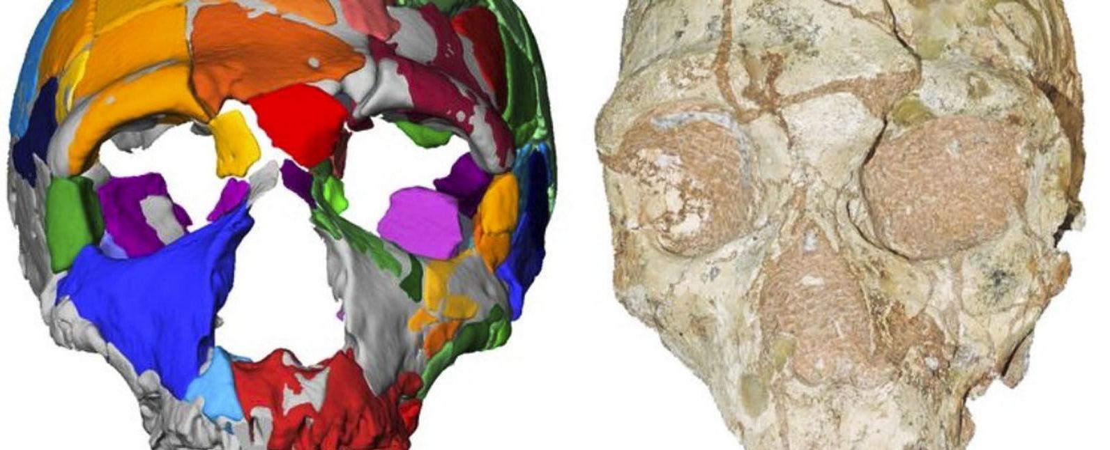 Crânios misteriosos encontrados na Grécia