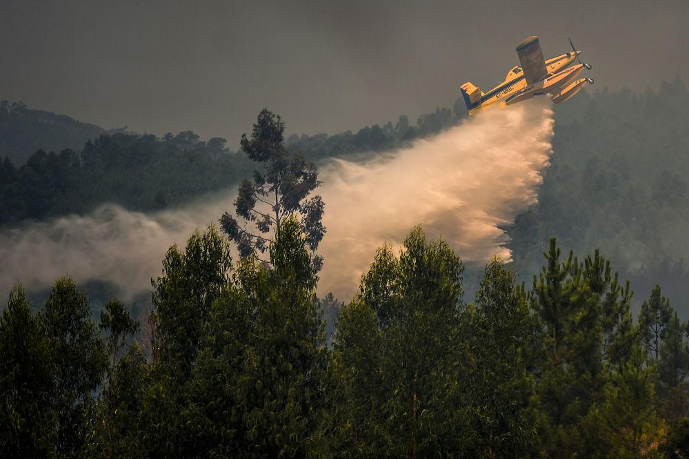 Avião de combate a incêndios despeja água em Relva, no centro de Portugal, 21 de julho de 2019