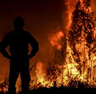 Bombeiro monitora a progressão do incêndio em Amêndoa, no centro de Portugal, a 21 de Julho de 2019