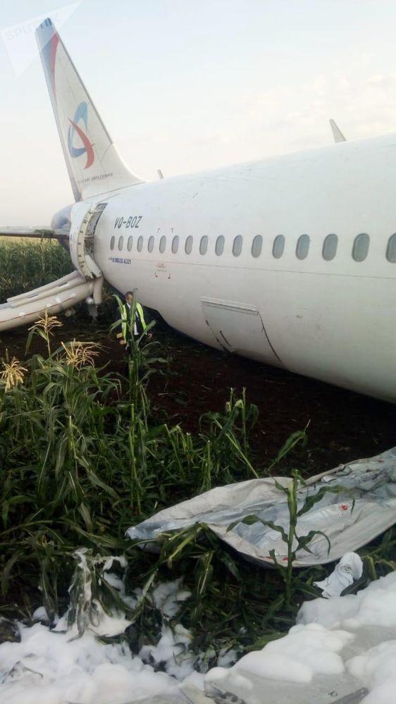 Consequências do pouso forçado do avião A321 na região de Moscou