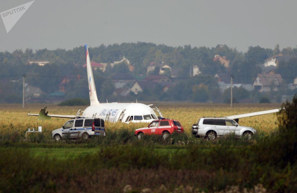 Avião na plantação após evacuação dos passageiros