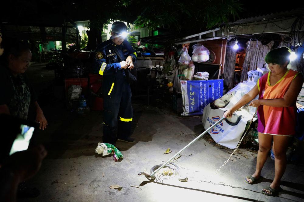 Mulher encontra e segura cobra até a chegada dos capturadores na Tailândia
