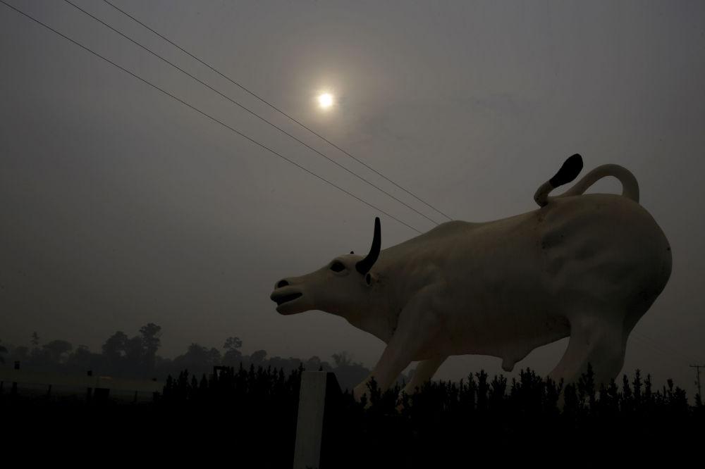 Escultura de um touro com fumaça ao fundo