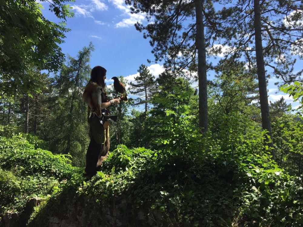 Garota posa com uma águia na floresta Tuttlingen, na Alemanha