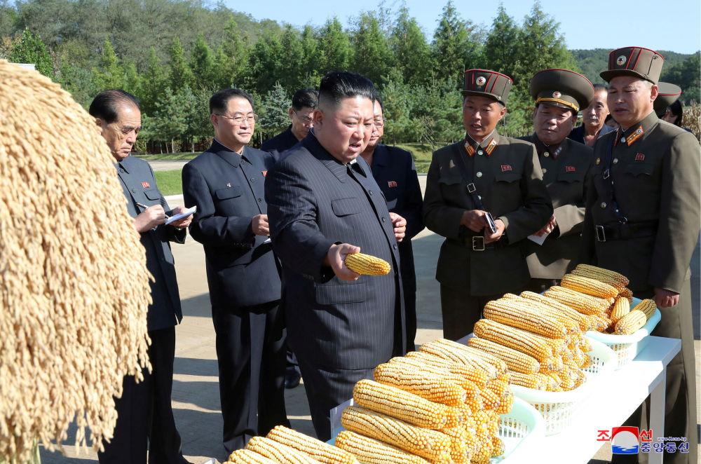 Líder norte-coreano Kim Jong-un visitando uma fazenda