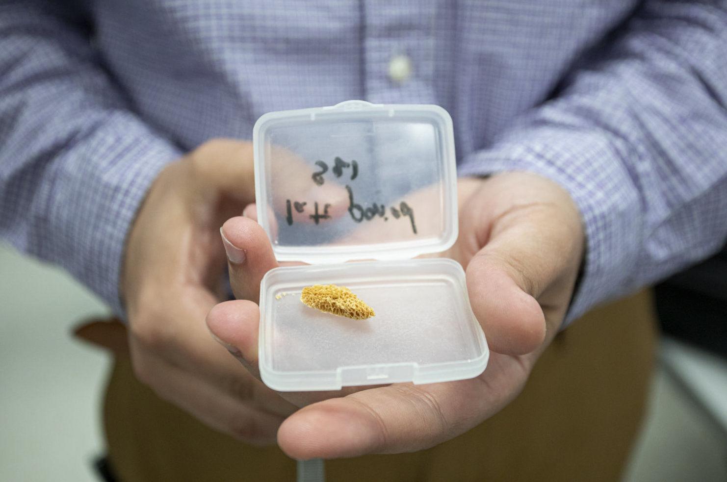 Amostra de fêmur de uma múmia no Laboratório Nacional de Lawrence Berkeley