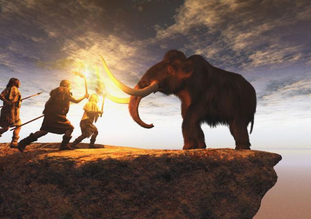 Primeiros humanos caçam elefante