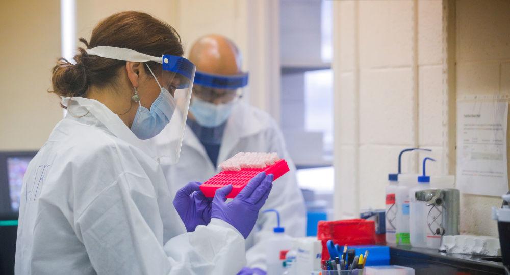 Desenvolvedor de vacina britânica para COVID-19 alerta para apenas 50% de possibilidade de êxito