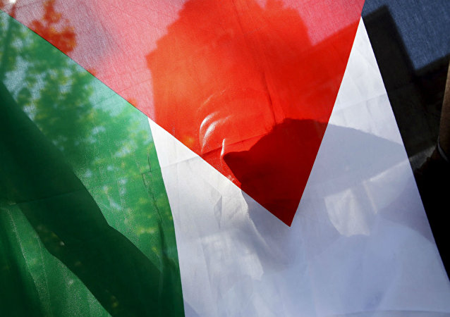Bandeira da Palestina.