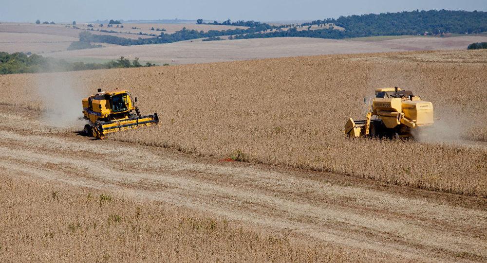 Colheita de soja no Brasil (imagem referencial)
