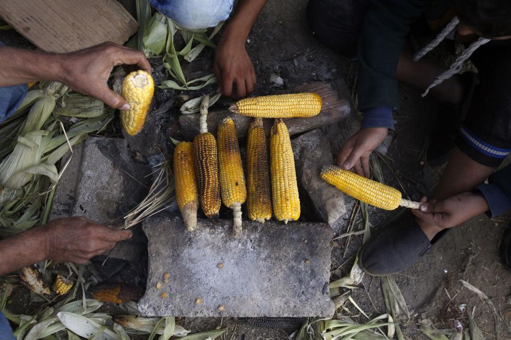 Imigrantes preparam milhos na fronteira entre Grécia e Macedônia