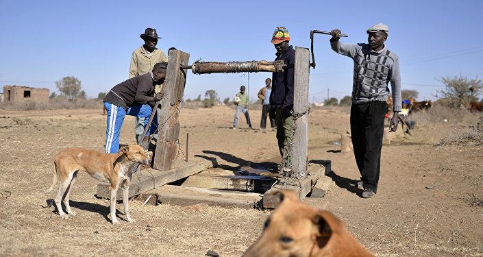 Agricultura na África