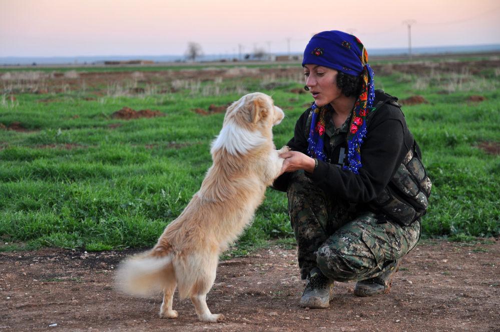 Uma miliciana curda da Unidades de Proteção das Mulheres (YPJ) joga com cachorro na cidade síria de Ras al-Ain, perto da fronteira com a Turquia.