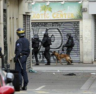 Membros do batalhão especial francês RAID com um cachorro de assalto em Saint-Dénis, perto de Paris, durante a operalçaio antiterrorista