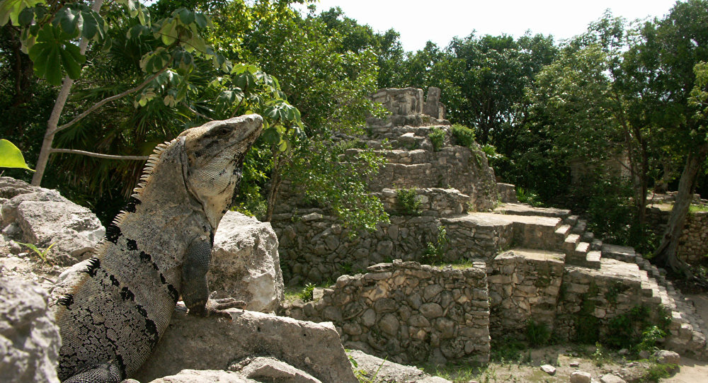 Parque ecológico de México