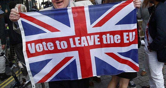 Partidario del Brexit