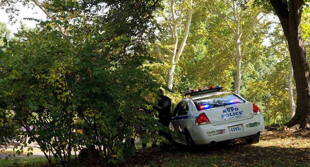 Veículo policial no Central Park de Nova York