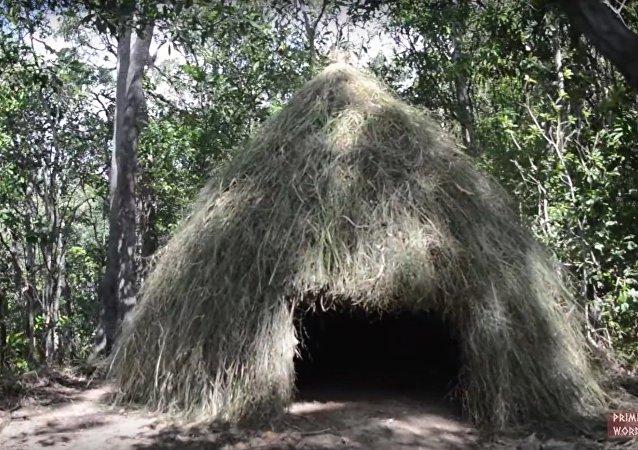 Casa de erva