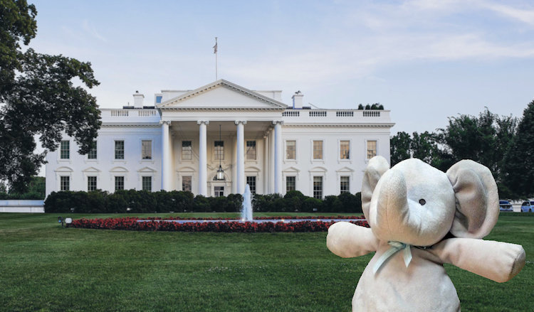 Elefante de pelúcia passeia pelo jardim da Casa Branca a convite de Obama