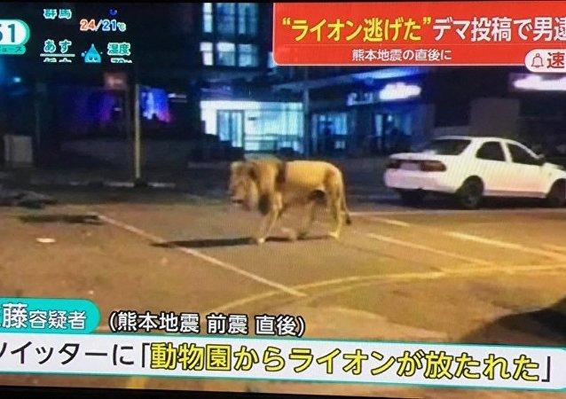 Tweet falso foi exibido pela TV japonesa