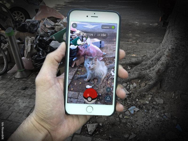 Camapanha israelense utiliza Pokémon Go para promover adoção de animais
