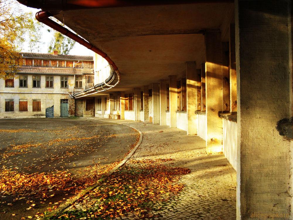 Aldeia Olímpica abandonada em Berlim