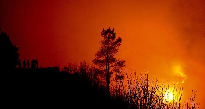 Incêndios em Portugal (foto de arquivo)