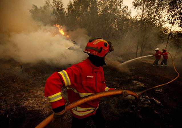 Bombeiro português combate ao incêndio, Agueda, Portugal 12 de agosto 2016