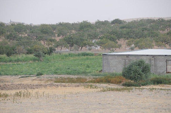 Campo do Exército Livre da Síria no povoado de Keklice