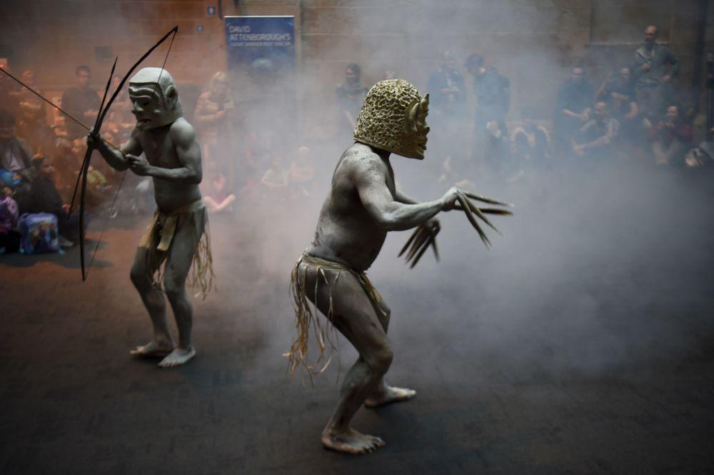 Homens de lama Azaro de vale de Azaro, na Papua-Nova Guiné, mostram seus rituais perante visitantes do Museu da Austrália em Sydney, Austrália. 29 de setembro de 2016