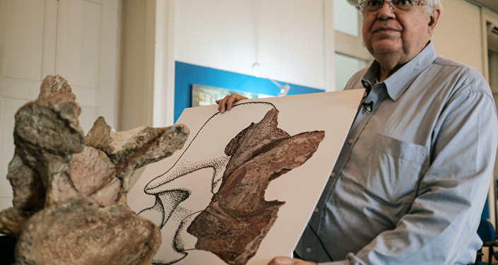 Fósseis de dinossauro coletados por Llewellyn Ivor Price, mostrados por Diógenes de Almeida Campos, Diretor do Museu de Ciências da Terra