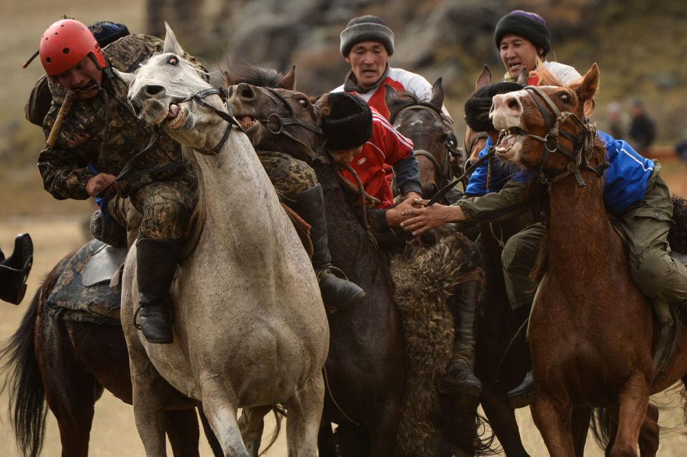 Jogadores de Kok-boru, desporto aborígene, durante as competições do I Torneio Republicano de esportes equestres, realizado na república russa de Altai