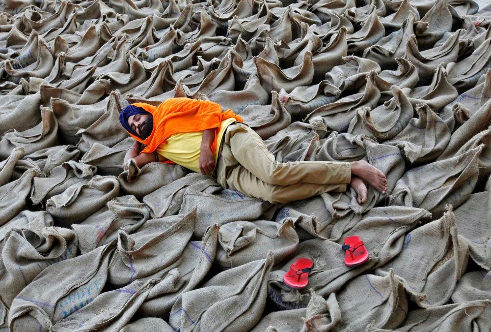 Fazendeiro descansa sobre sacos de arroz em um mercado de grãos em Chandigarh, Índia