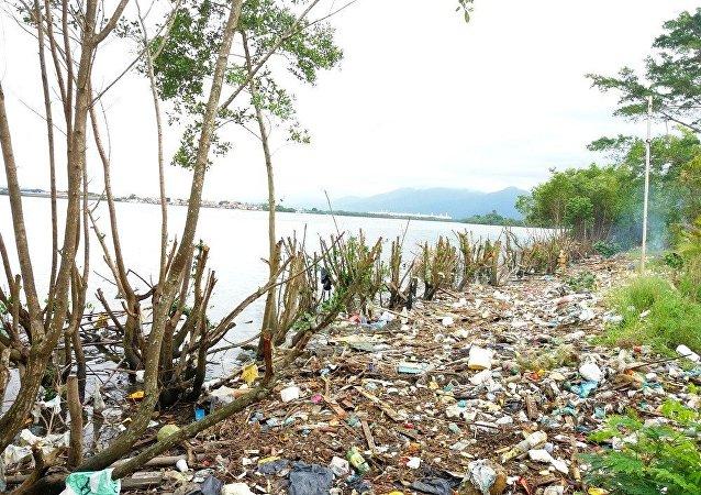 Uma das áreas degradadas com lixo e o mangue desmatado em Cubatão, que está sendo recuperada pelos voluntários no Bairro do Casqueiro
