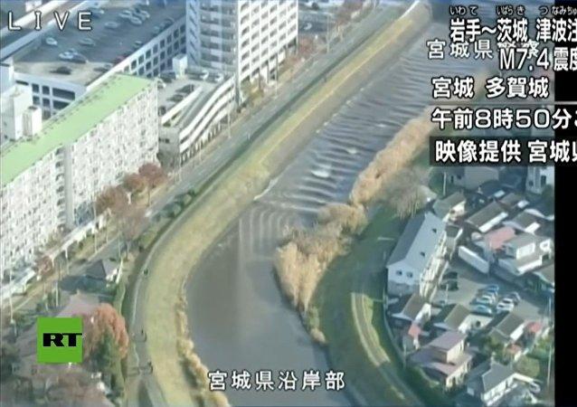 Vídeo mostra inversão do fluxo de um rio após o tsunami que sucedeu terremoto no Japão