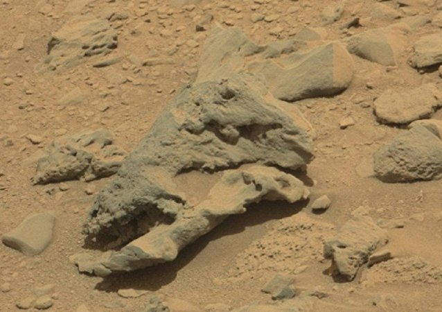 Suposto crânio de dinossauro em Marte
