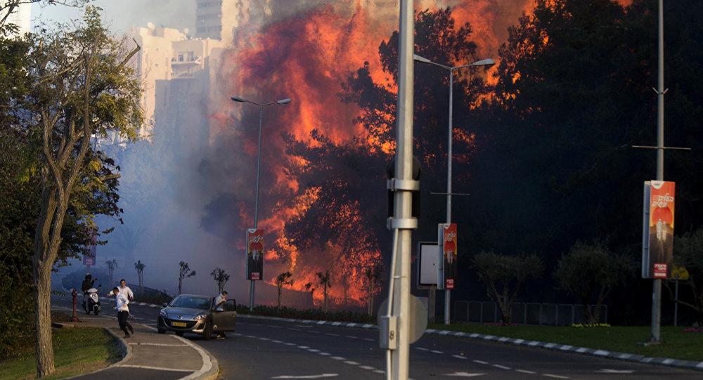 Pessoas correm de incêndios florestais em Haifa, Israel, quinta-feira, 24 de novembro de 2016