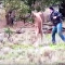 Homem dá murro na cara de canguru protegendo seu cachorro
